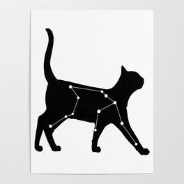 Aquarius Cat Poster