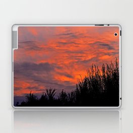 August Sunset Laptop & iPad Skin