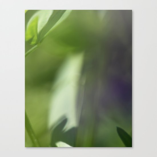 The Verge Canvas Print