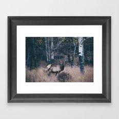 elk-y .  Framed Art Print