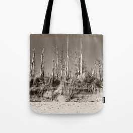Dead Trees On The Beach Tote Bag