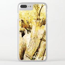 100-Year-Old Ebony Fence Clear iPhone Case