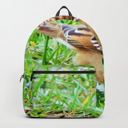 Little Sparrow Backpack
