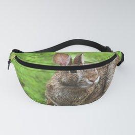 Bunny Hop Fanny Pack
