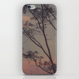 Soft Twilight iPhone Skin