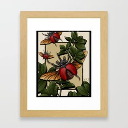 Beetle Insecta Framed Art Print