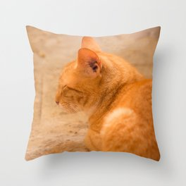 Orange Cat Is Resting On The Terrace  #decor #society6 #homedecor Throw Pillow