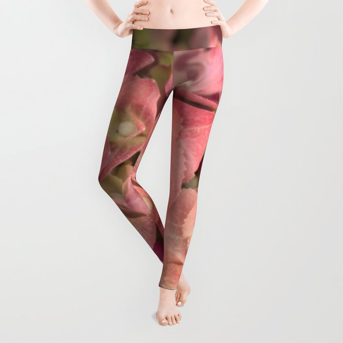 Pink hydrangea in LOVE - Flower floral Leggings