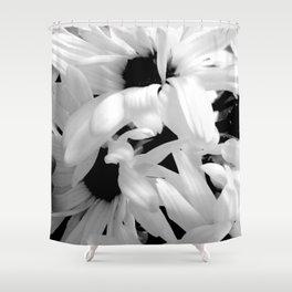 Shasta Daisies In The Light Shower Curtain