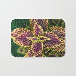 Plant Patterns - Coleus Colors Bath Mat