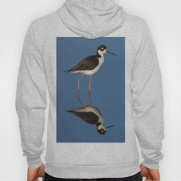 Bird black necked Stilt Himantopus mexicanus Hoody