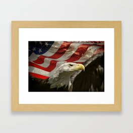 American Eagle Framed Art Print