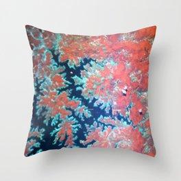 Deep craky earth view texture Throw Pillow