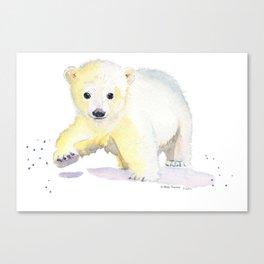 Little Polar Bear Canvas Print