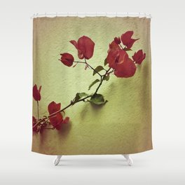 Shabby Chic Floral Shower Curtain