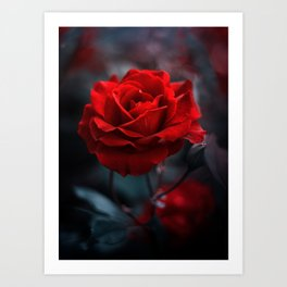 Red Rose - scarlet as vermilion Art Print