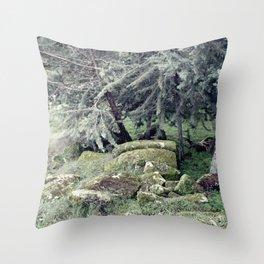 Sleeping stones Throw Pillow