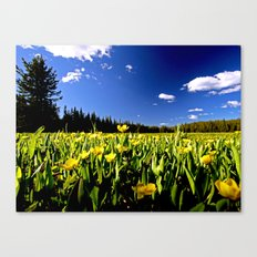 For Jeremy Canvas Print