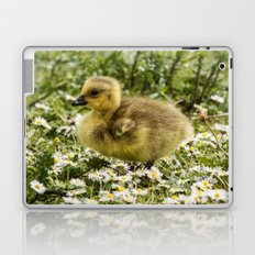 Fluffy Gosling Laptop & iPad Skin