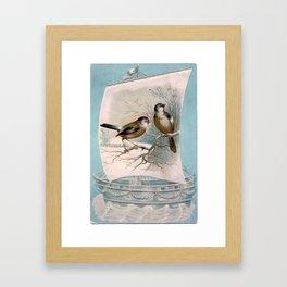 Vintage Birds on a Boat Framed Art Print