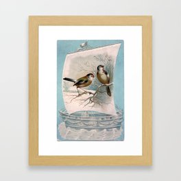 Vintage Birds on a Boat Framed Art Print