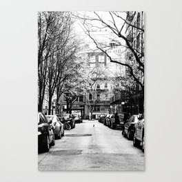 Tree Lined Streets in New York City Canvas Print