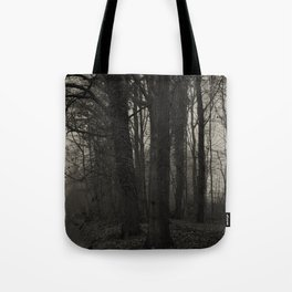 Winterscenery Tote Bag