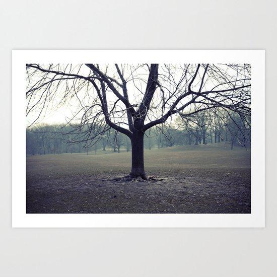 parktree Art Print