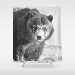 Alaskan Grizzly Bear in Snow, B & W - 3 Shower Curtain