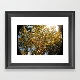 oh, fall Framed Art Print
