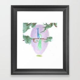 Peacock Prime Framed Art Print