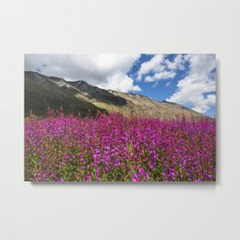 Fuchsia Mountain Flowers Metal Print