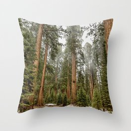 Sequoias in the Fog Throw Pillow
