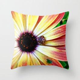 Snail Shell 0907 Throw Pillow