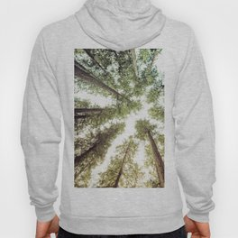 Green Forest Sky Trees Hoody
