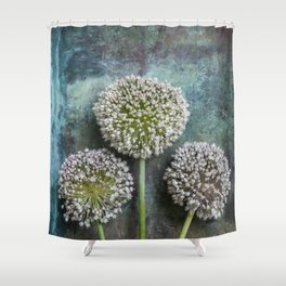 Three Allium Flowers Shower Curtain