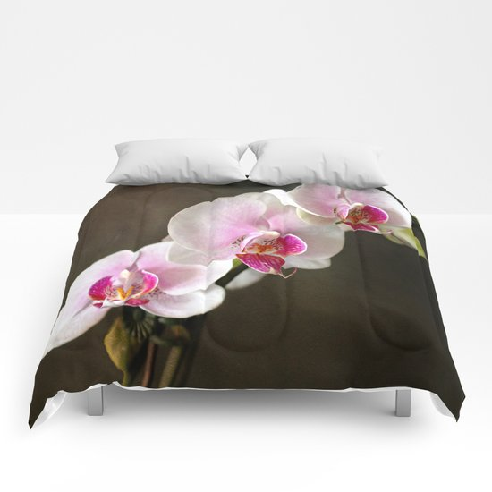 Pink Orchid Comforters