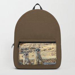 A couple of meerkats Backpack