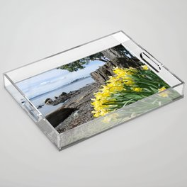DAFFODILS OF SPRING IN THE SAN JUAN ISLANDS Acrylic Tray