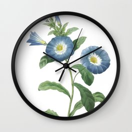 HIGHEST QUALITY botanical poster of Dwarf morning-glory Wall Clock