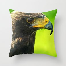Haryer hawk Throw Pillow