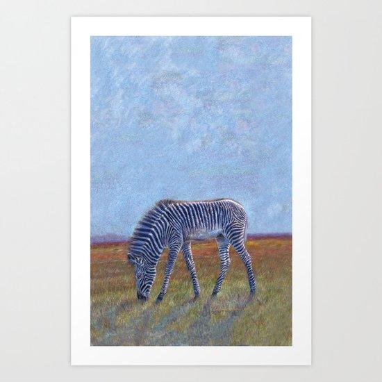 Zebra foal Art Print