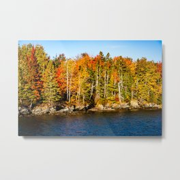 New England Fall. USA. Metal Print
