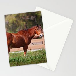 A Horse is a Horse Stationery Cards