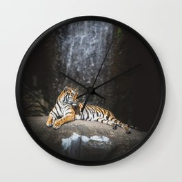 Big cat Wall Clock