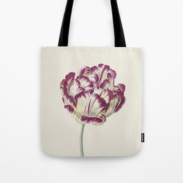 Botanical illustration of a tulip Tote Bag