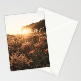 Golden(rod) Hour Stationery Cards