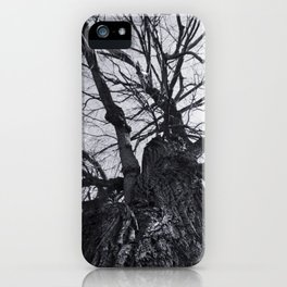 MindWeb iPhone Case