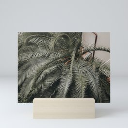 Lush Greenery of the Italian Riviera, Palm Tree Bouquet   Beach vibes travel photography, Saige Ashton Prints Mini Art Print