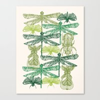 insects Canvas Prints featuring Insects by nkpappas